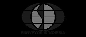 Surveyor-Indonesia-300x129-2.png